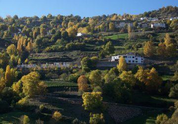 El Cercado en la Alpujarra